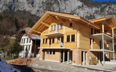 Neubau Bauernhaus